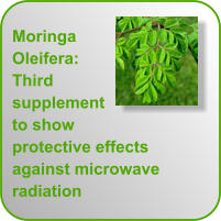 Moringa Oleifera: Third supplement to show protective effects against microwave radiation
